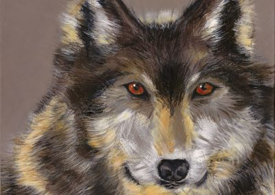 Alpha - Wolf by Gabrielle Conescu - Limited Edition Reproduction available